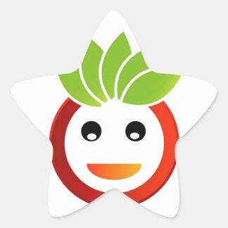 Happy smiley star sticker