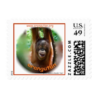 Happy Smiling Orangutan Postage Stamps