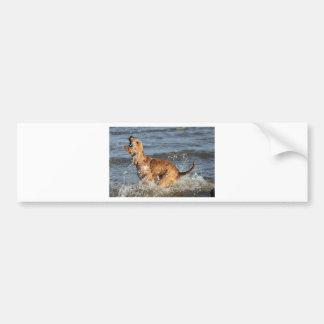 happy splashing dog bumper stickers