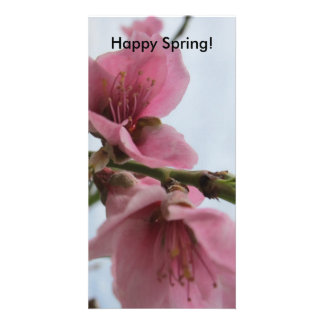 Happy Spring! Photo Card