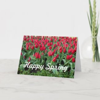 Happy Spring red tulip flowers in the garden Holiday Card