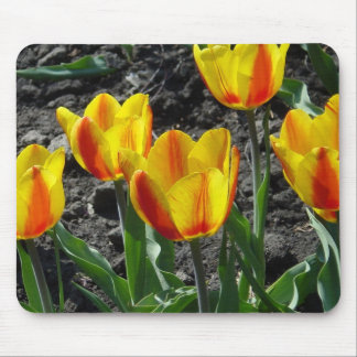 Happy spring time mouse pad
