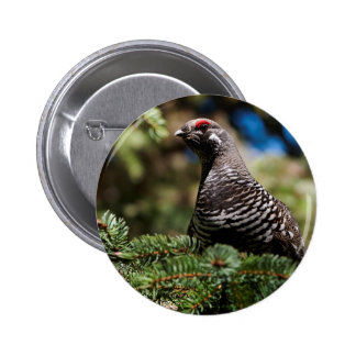Happy Spruce Grouse Pinback Button