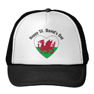 Happy St David s Day Hats