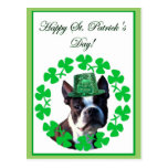 Happy st. Patrick's day boston terrier postcard