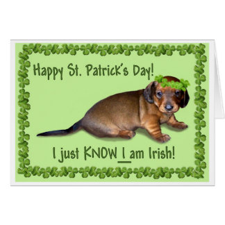 Happy St Patrick's Day from a Confused Doxie Pup Card