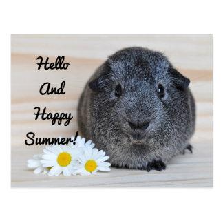 Happy Summer Guinea Pig Postcard