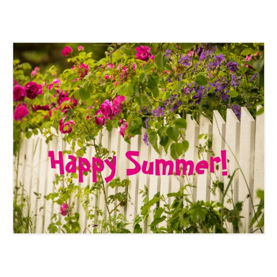 Happy Summer Pink Roses On A White Garden Fence Postcard