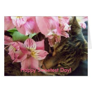 Happy Sweetest Day!  Greeting Card