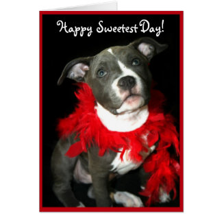 Happy Sweetest Day Pitbull puppy greeting card