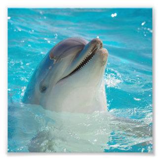 Happy Swimming Dolphin Art Photo