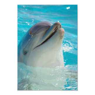 Happy Swimming Dolphin Card