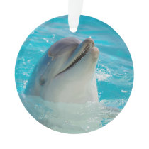 Happy Swimming Dolphin Ornament