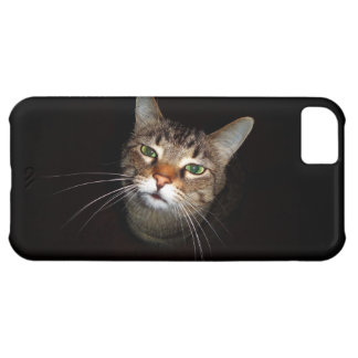 Happy Tabby Wiskers Case For iPhone 5C