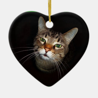 Happy Tabby Wiskers Double-Sided Heart Ceramic Christmas Ornament