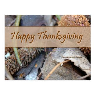 Happy Thanksgiving (3) Postcard
