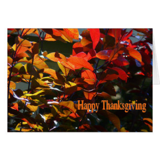 Happy Thanksgiving-Autumn Leaves Card