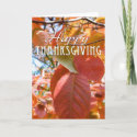 Happy Thanksgiving Card card