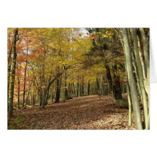 Happy Thanksgiving Card at Zazzle