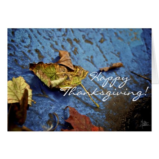 Happy Thanksgiving [Card] Greeting Card