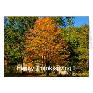 Happy Thanksgiving card Yellow Tree