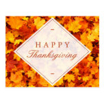 Happy Thanksgiving | Elegant Gold Red Fall Leaves Postcard