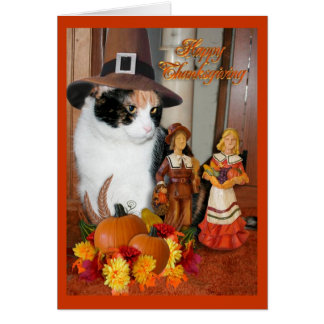 Happy Thanksgiving for cat lover Greeting Card