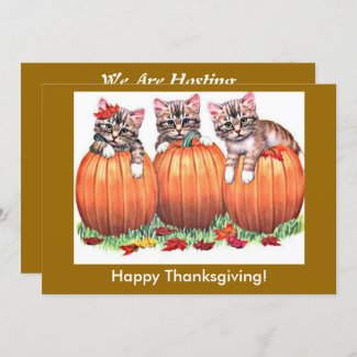 Happy Thanksgiving Kittens on Pumpkins, ZSSG Holiday Card