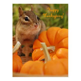 Happy Thanksgiving Little Chipmunk Postcard