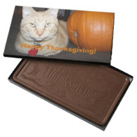 Happy Thanksgiving Orange Tabby 2 Pound Milk Chocolate Bar Box