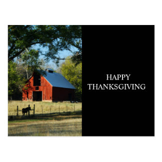 Happy Thanksgiving - Red Barn and Horse Postcard