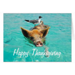 Happy Thanksgiving Swimming Pig Greeting Card