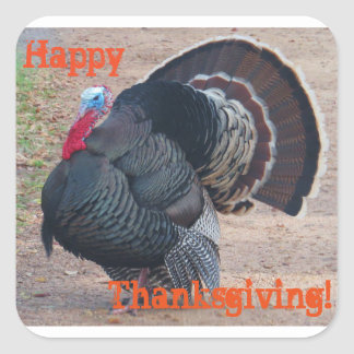 Happy Thanksgiving Turkey Photo Sticker