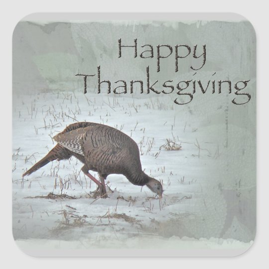 Happy Thanksgiving Wild Turkey Square Sticker