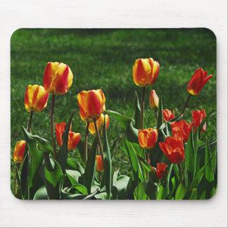 Happy Tulips Mousepad