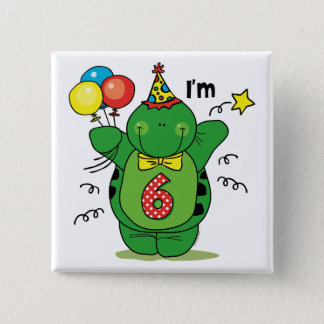 Happy Turtle 6th Birthday Pinback Button
