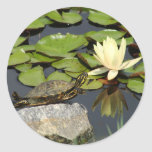 Happy Turtle in a Lily Pond Stickers