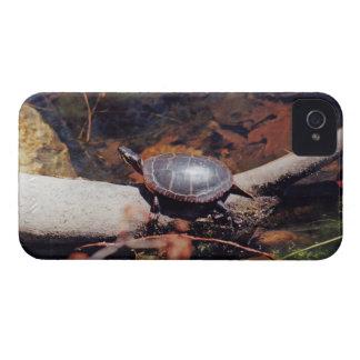 Happy Turtle iPhone 4 Case