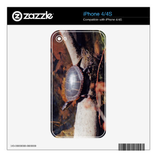 Happy Turtle iPhone 4 Skin
