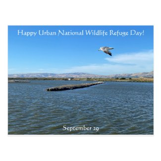 Happy Urban National Wildlife Refuge Day! Postcard