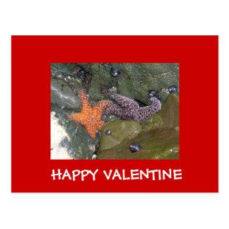 HAPPY VALENTINE Star Fish Post Cards