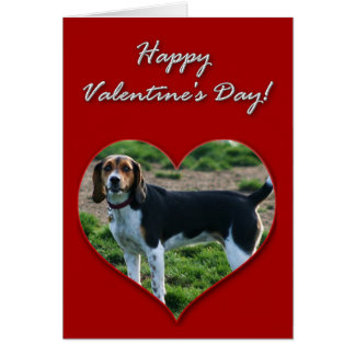 Happy Valentine's Day Beagle Dog Greeting Card