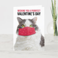 Happy Valentine's Day Big Cat in Face Mask Holiday Card