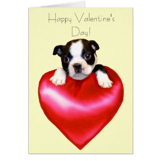Happy Valentineu0026#39;s Day Boston Terrier Card