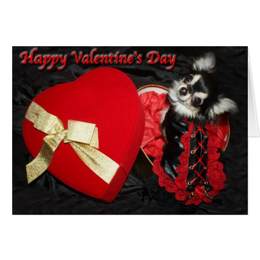 Happy Valentine's Day Chihuahua Greeting Card