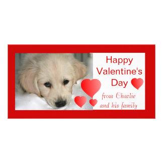 Happy Valentine's Day Dog Photo Cards