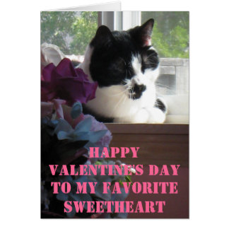 Happy Valentine's Day from SOC Greeting Card