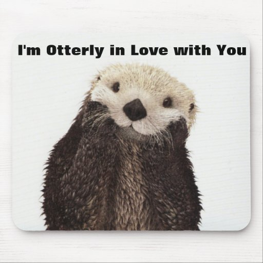 Happy Valentines Day Funny Otter Mousepads