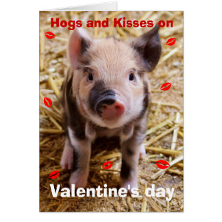Happy Valentines Day Funny Piglet Greeting Card