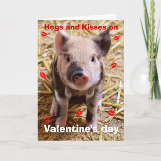 Happy Valentines Day Funny Piglet Holiday Card